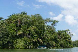 Boat tour at Panama Canal Gatun Lake Yala Tours Panama