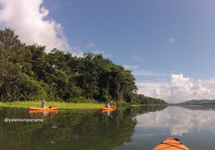 kayak Chagres River Soberania National Park