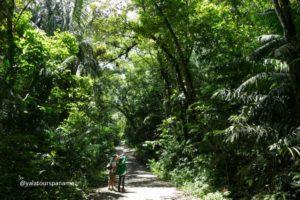 Soberania National Park hike walk or nature